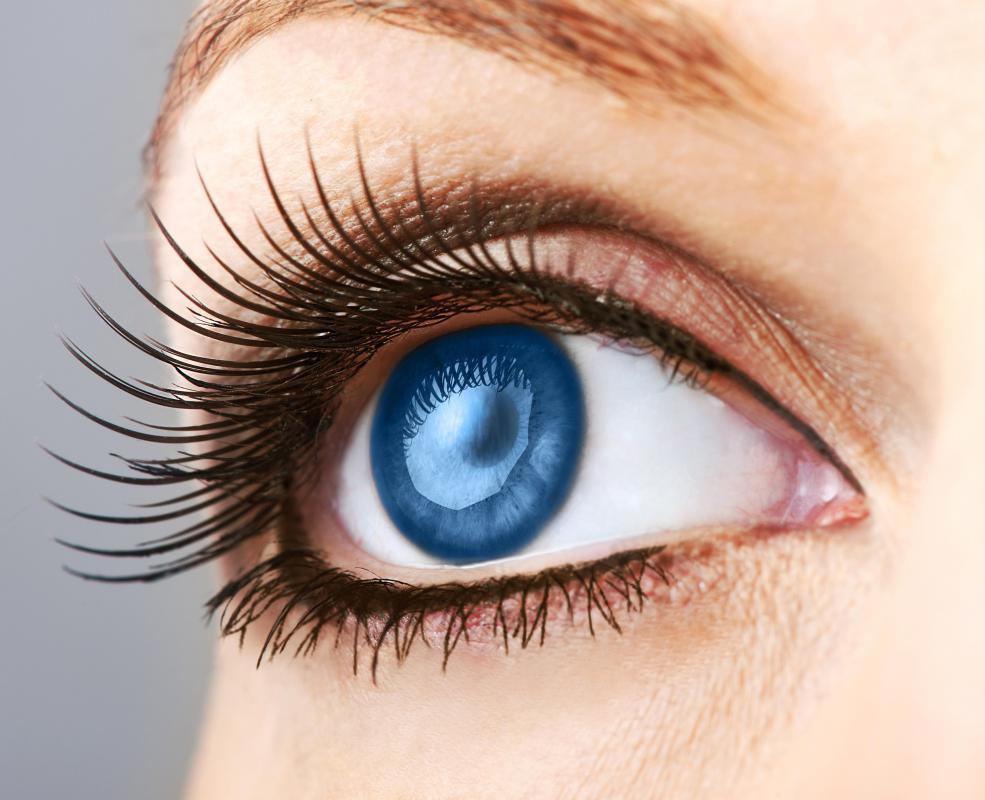 How Do I Choose the Best Eyelash Curler Refills?