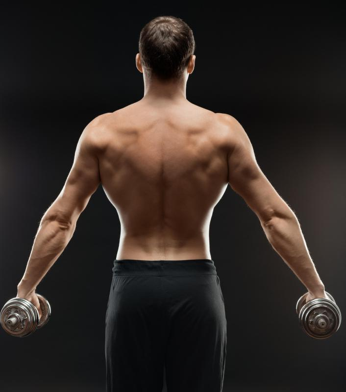 What is the Latissimus Dorsi Muscle? (with pictures)