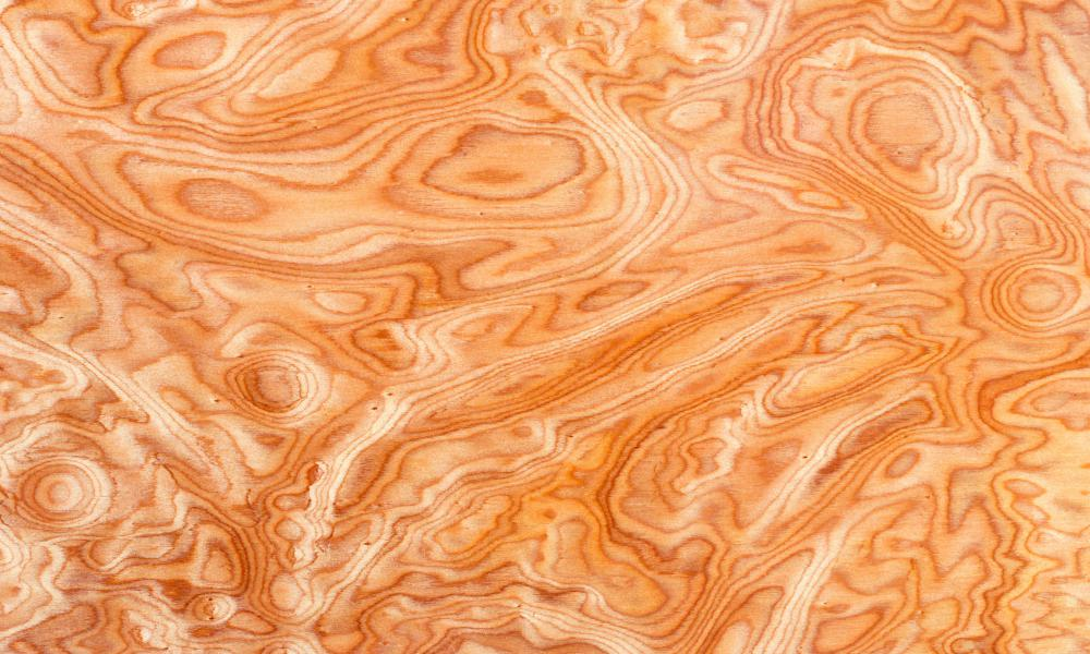 Beau Burl Wood Often Results Because A Tree Has Experienced Some Type Of  Environmental Stress.