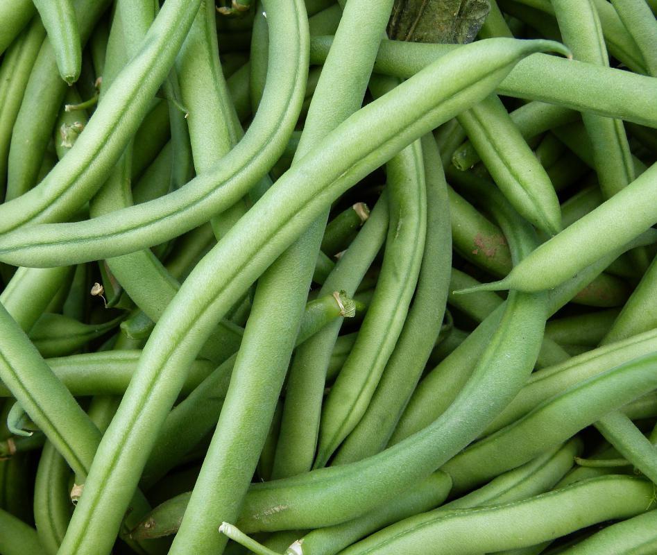 lubia polo green bean rice fried saimin green beans green beans ...