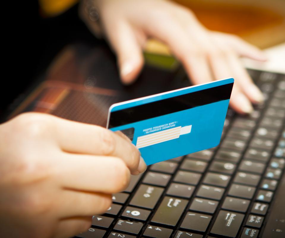 computer crime credit card fraud essay