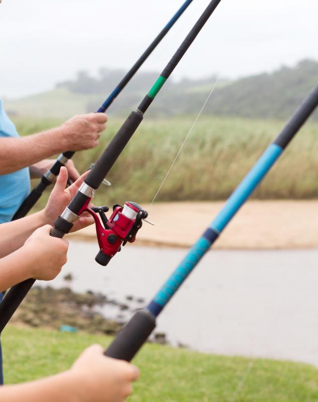 What are the different types of summer camps with pictures for Types of fishing poles
