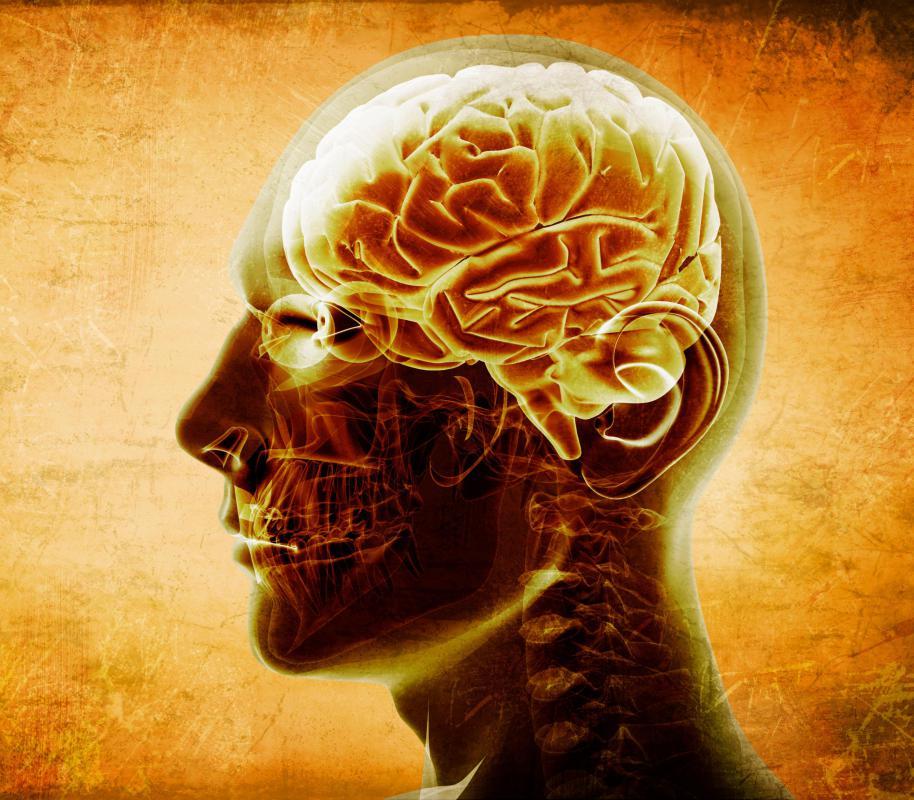 Ivermectin for head lice treatment