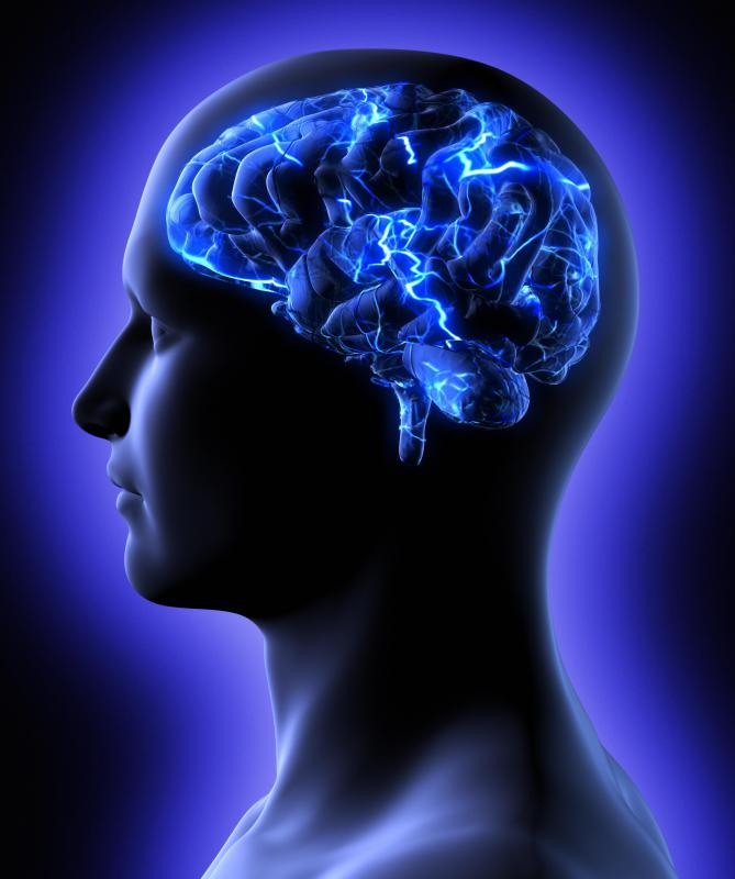 Memory supplement procera image 2