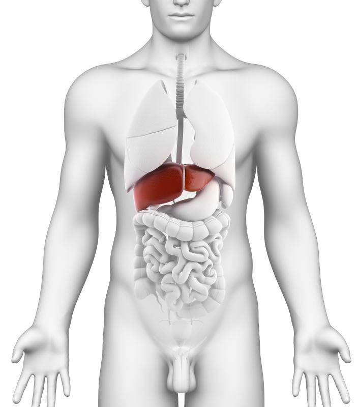 tumor blocking liver duct