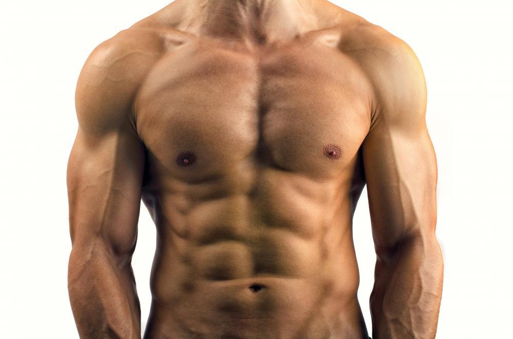 male-muscular-torso.jpg