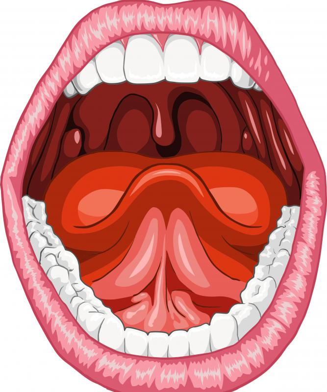 herpes labialis epidemiology
