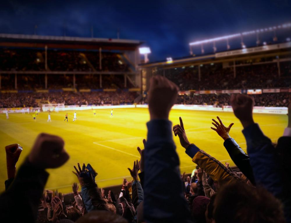 Classification Essay On Sports Fans