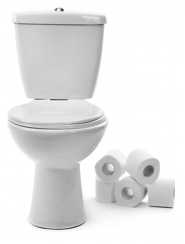 a toilet is a plumbing receptacle for human waste