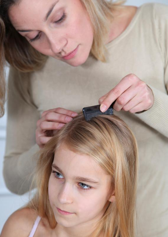 how to get rid of lice eggs in hair