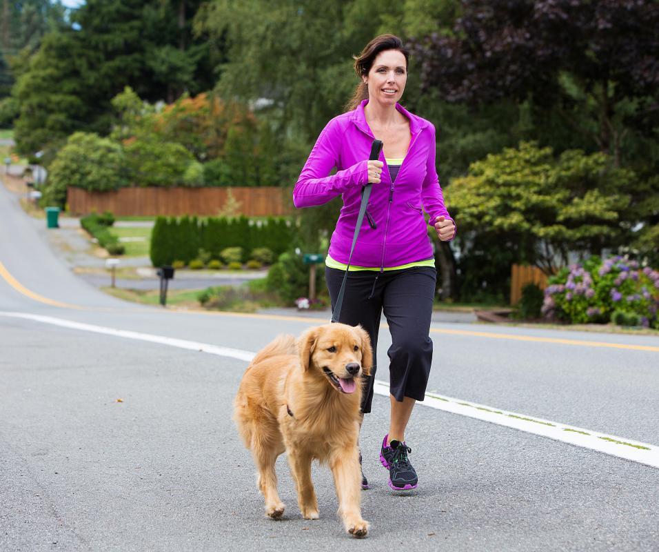 Woman Walking A Golden Retriever