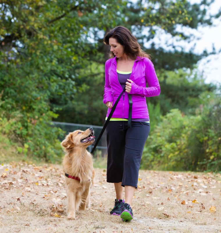 What is the Proper Etiquette for Walking a Dog? (with pictures)