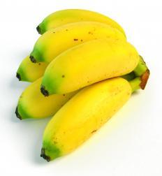 Baby bananas.