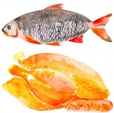 Fish and chicken are exceptionally high in protein.