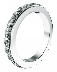 A titanium ring.