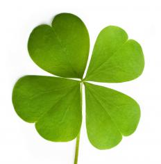 The four leaf clover is a sign of good luck.
