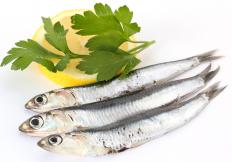 Anchovies are small, oily fish.