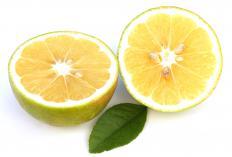 A bergamot orange.