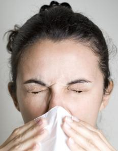 Symptoms of hayfever include sneezing.