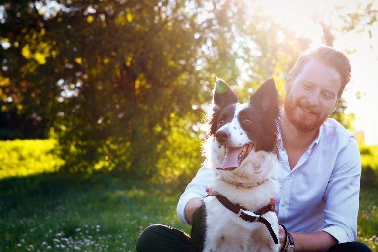 emotional support animal companion
